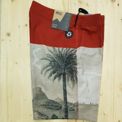 PICTURE BOARDSHORTS CODE 19