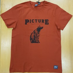 PICTURE TEE POLAR BRICK